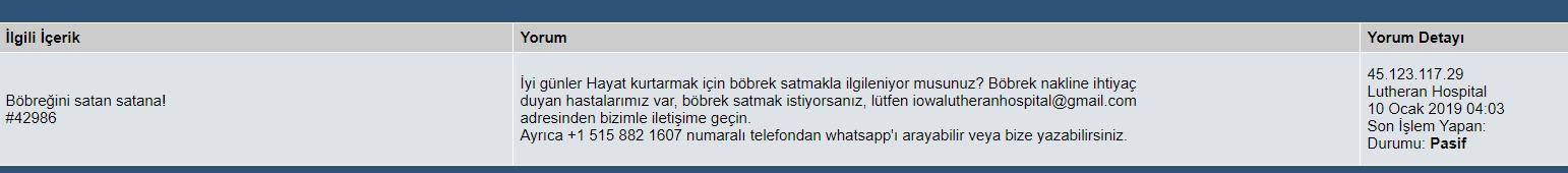 bobrek-haber-yorum.jpg