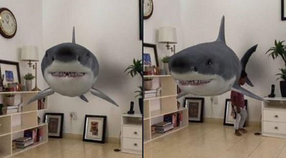 google-3d-hayvanlar2.jpg