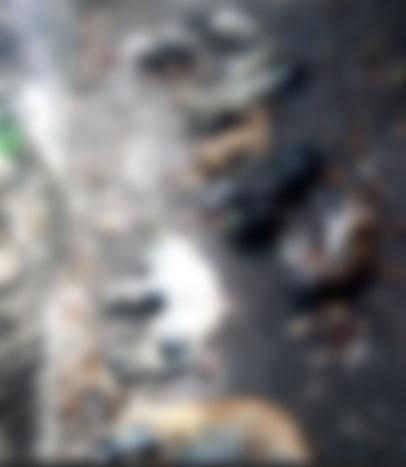 hayvan-katliami5.jpg
