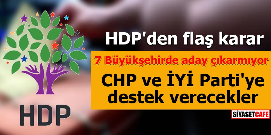 hdp-004.jpg