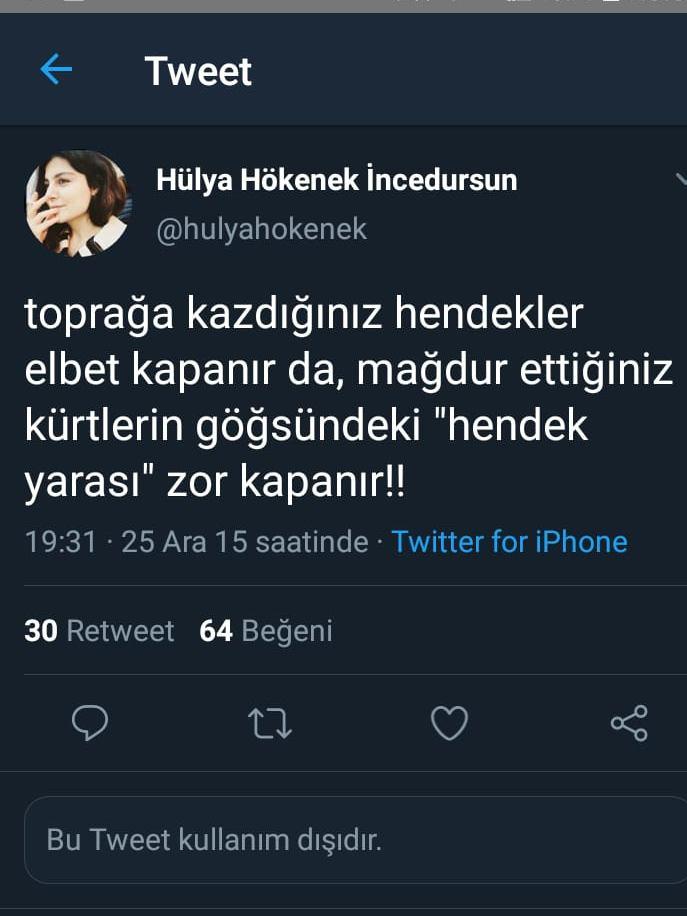 hulya-hokenek-tweet-siyasetcafe1.jpeg
