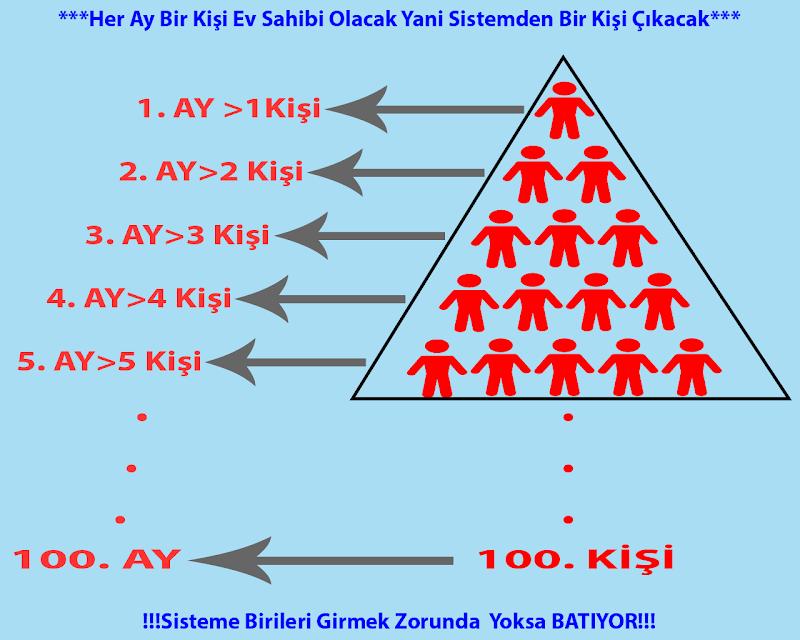 ponzi-piramidi.png
