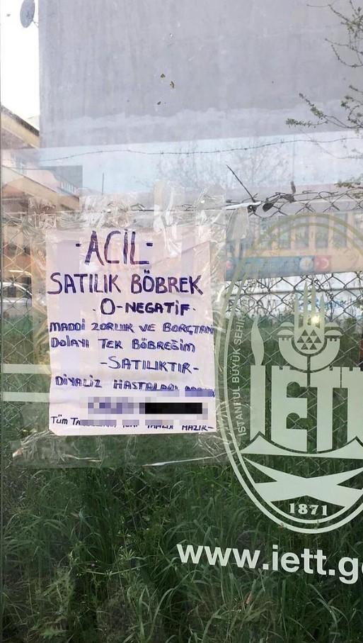 satilik-bobrek.jpg