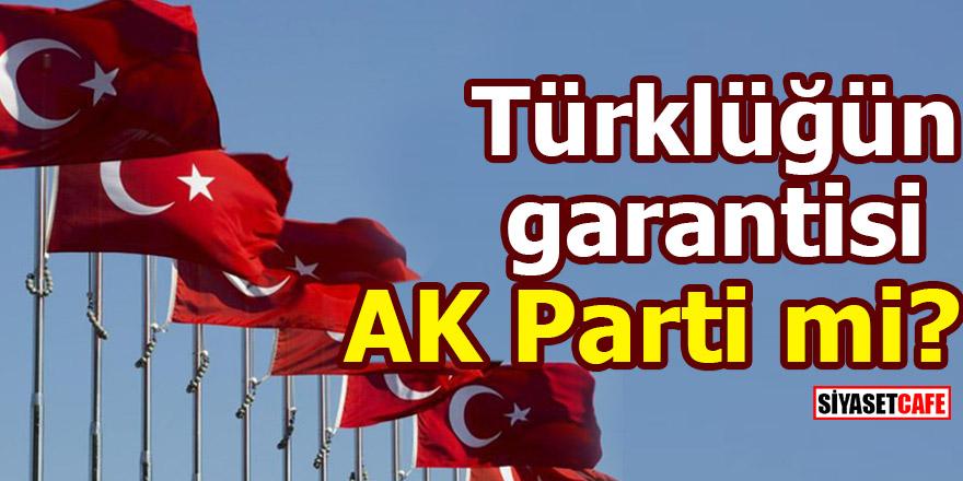turkl-001.jpg