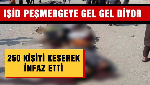I��D, 250 ki�iyi keserek infaz etti