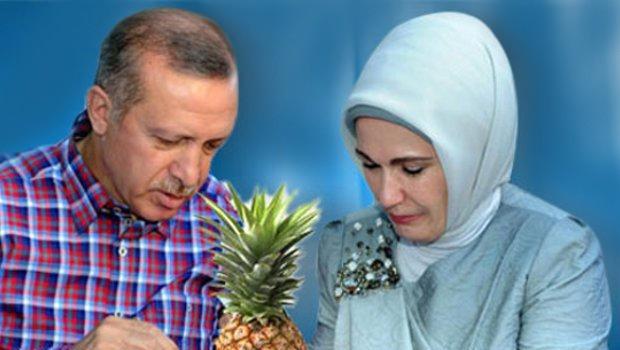 Erdoğan: Elinizde ne varsa açıklayın