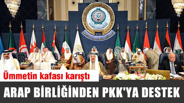 Arap Birliğinden PKK'ya destek, Hani Din kardeşiydik be arap