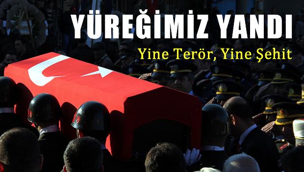 ��rnak ve Diyarbak�r'da toplam 8 �ehidimiz var!