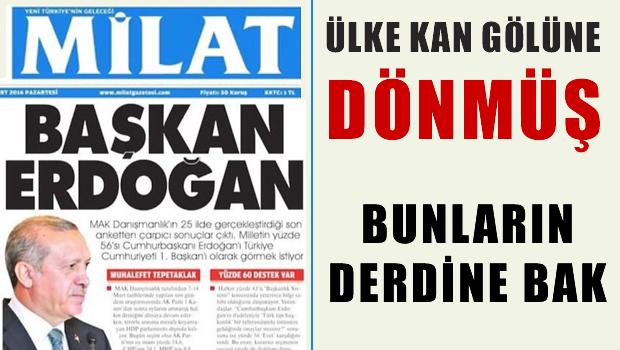 Türkiye kan gölüne dönmüş, bunların derdi Başkan Erdoğan'
