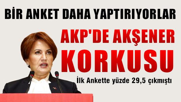 AKP, Meral Akşener için anket yaptıracak