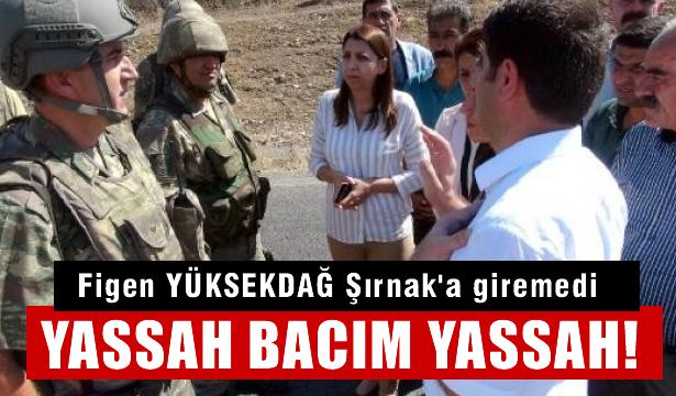 Arkasını PKK ve PYD'ye dayayan Figen Yüksekdağ Şırnak'a alınmadı!
