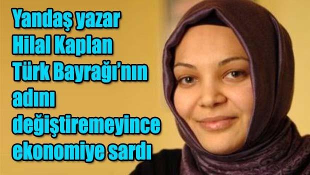 Yandaş yazar Kaplan, Zeybekçi ve Şimşek'e verdi veriştirdi