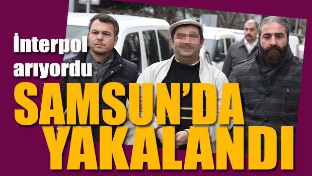 İnterpol arıyordu, Samsun'da yakalandı