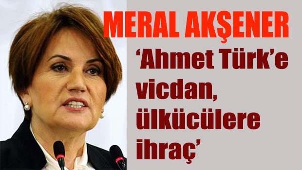 Akşener, 'Ahmet Türk'e vicdan, ülkücülere ihraç'