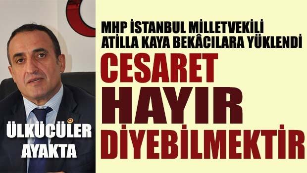 MHP'li Atilla Kaya Başkanlığı 'Türklüğün bekasına' bağlayanlara yüklendi