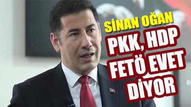 Sinan Ogan, 'PKK, HDP, FETÖ evet diyor!'
