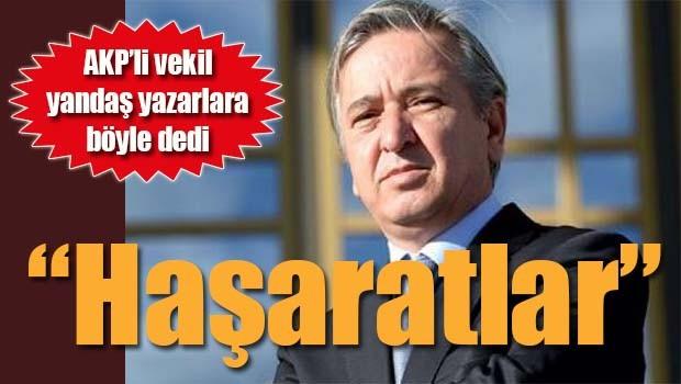 AKP'li vekilden yandaş yazarlara, 'Haşaratlar'