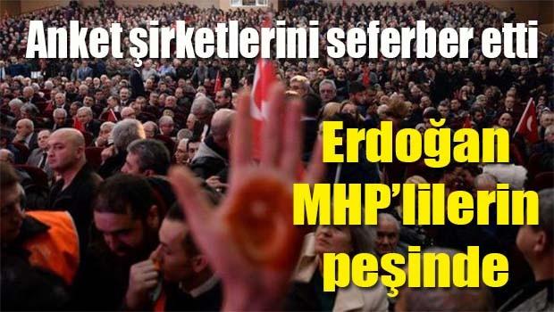 Erdoğan, Anket şirketlerine MHP tabanı 'Niye hayır' diye sorduruyor!