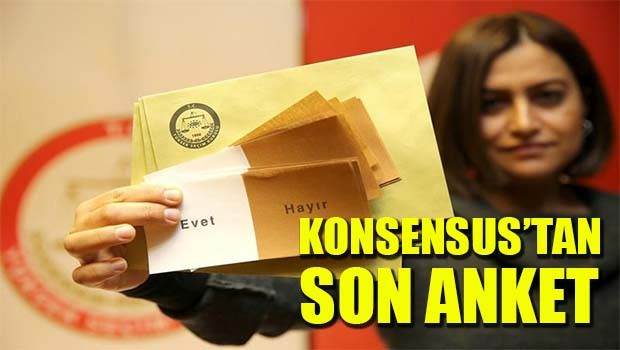 Konsensus'tan son anket!