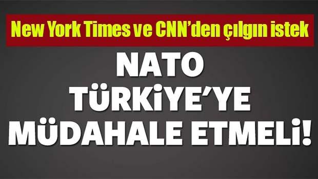 NATO'yu Türkiye'ye müdahale etmeye çağırdılar