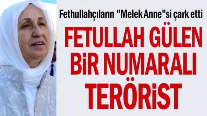 Melek İpek, 'Fetullah Gülen bir numaralı terörist'