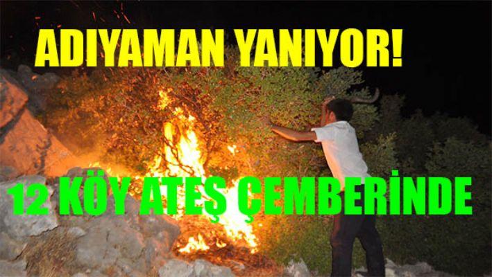 Adıyaman'daki Yangın 12 Köyü Sardı