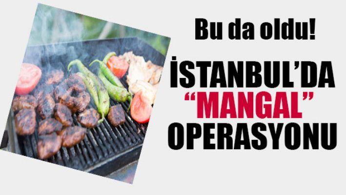 İstanbul'da 'mangal' operasyonu...