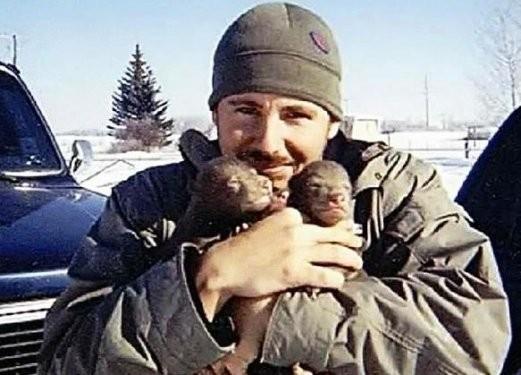 Alaska'da  2 ayı yavrusu yetiştirdi